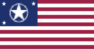 Future US Flag